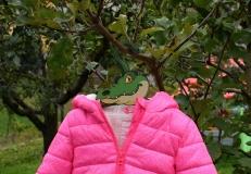 krokodýl s bundou