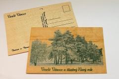 Zasněžené stromy - zelená barva
